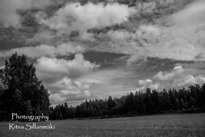 itva Sillanmäki - Finnish summer (1 of 3)