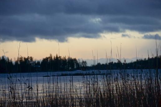 Ritva Sillanmäki-211214 (20 of 31)