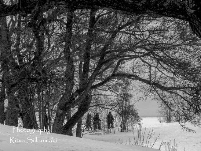 Winter-0148-2