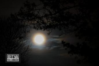 2015-12-24 Full moon Wmas 15 (29)
