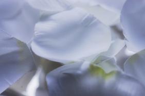 valkoinen-09441
