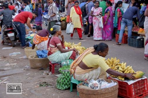 Maposa , Goa (31)-9