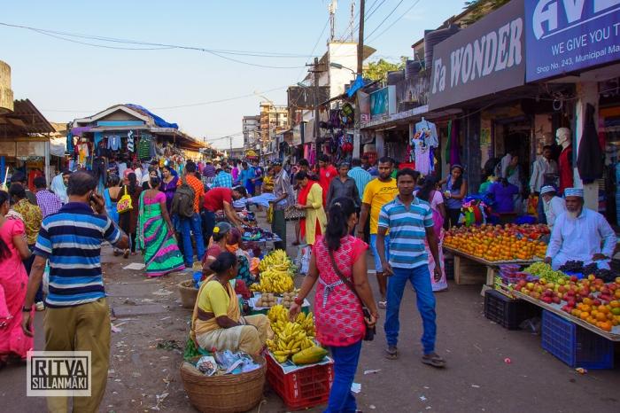 Maposa , Goa (33)-1
