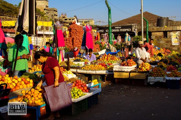 Maposa , Goa (46)-14