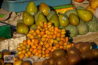 Maposa , Goa (48)-16