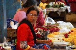 Maposa , Goa (55)-18
