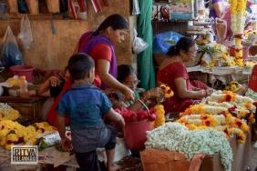 Maposa , Goa (57)-19