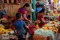 Maposa , Goa (57)-48