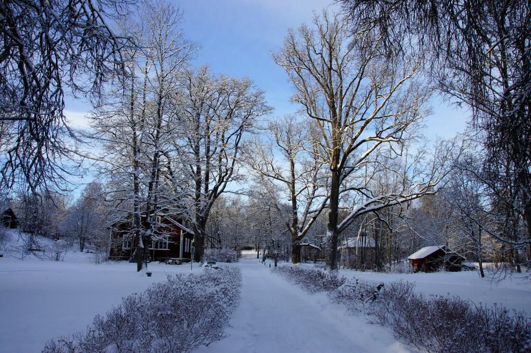 Vols, Kirkkonummi (1)