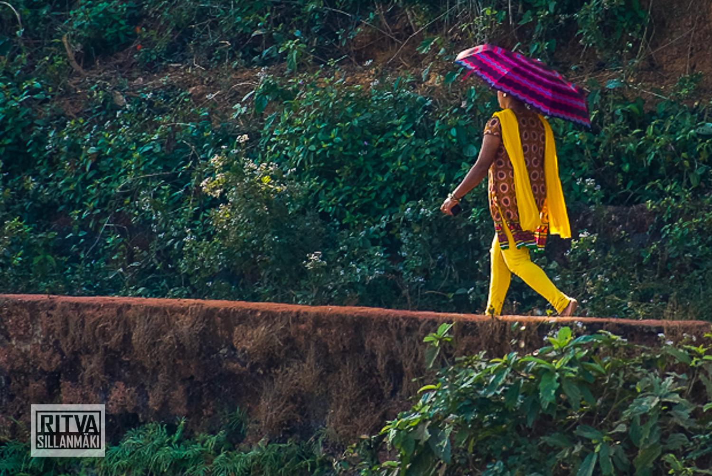Goa India, Chapora River (20).jpg