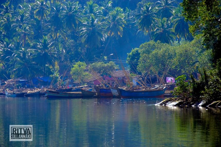 Goa India, Chapora River (29)