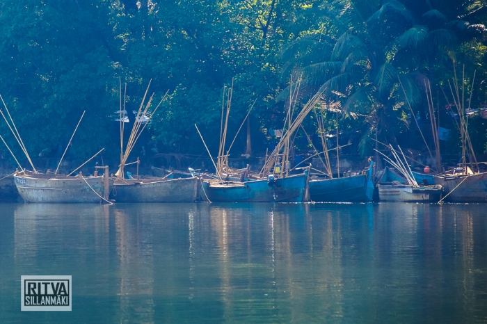 Goa India, Chapora River (32)-2