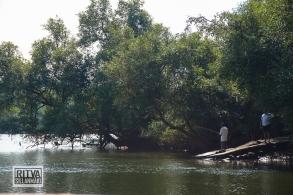 Goa India, Chapora River (62)