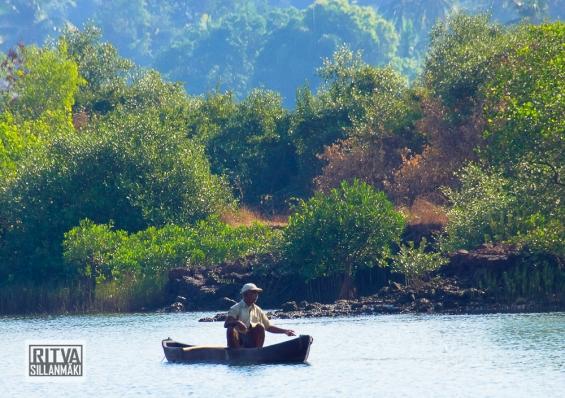 Goa India, Chapora River (8)