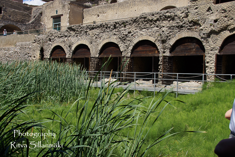 Herculaneum (15 of 142)