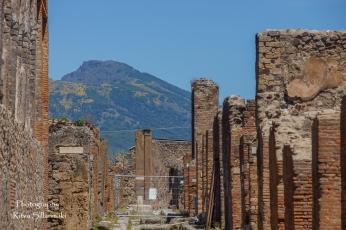 Pompeii (168 of 180)