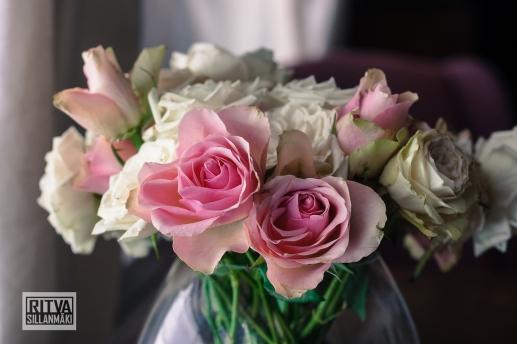 Roses (14)