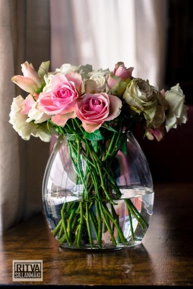 Roses (15)