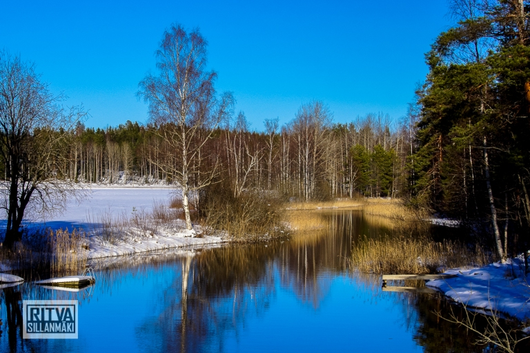 Salajoki creek (15)