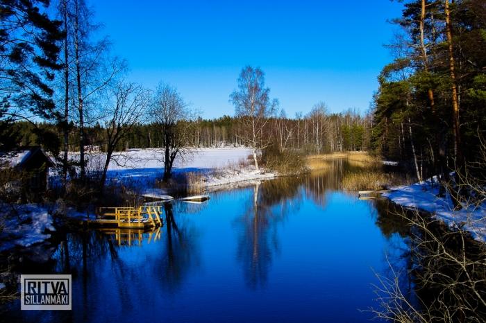 Salajoki creek (16)