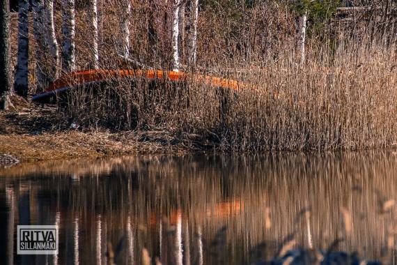 seppälän ranta-01311