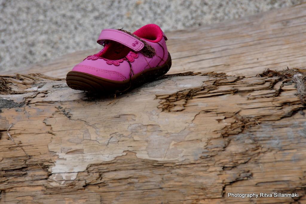 pink shoe (1)