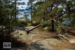Porkkalanniemi-Finland-04654