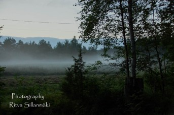 misty evening-12