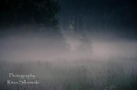 misty evening-25