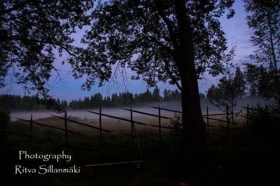 misty evening-38