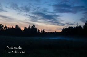 Misty evening-24