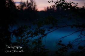 Misty evening-29
