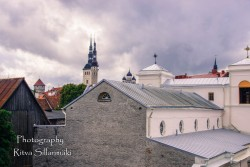 Tallinn (106)