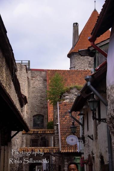 Tallinn (40)