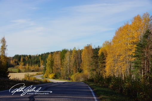 country-roads-in-fall-4-2