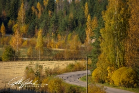 country-roads-in-fall-5