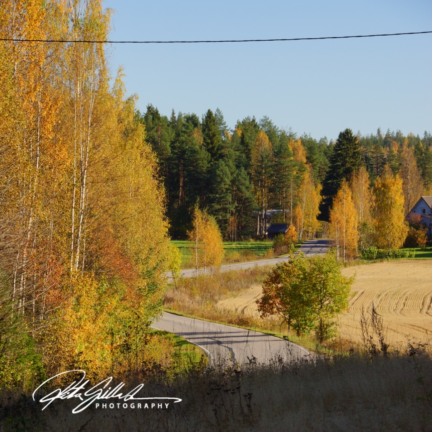 country-roads-in-fall-6