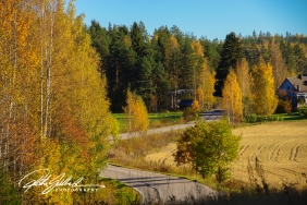 country-roads-in-fall-7