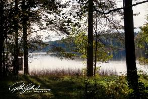 lakeside-view-1