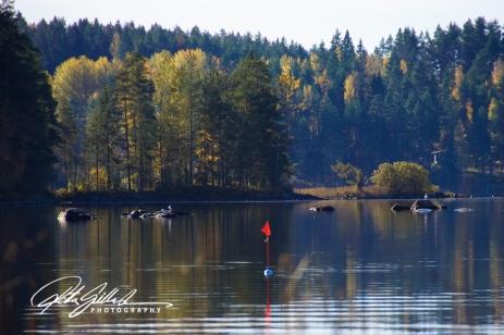 lakeside-view-23