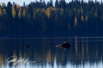 lakeside-view-39