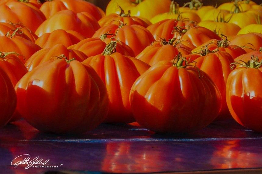 tomatos-07210