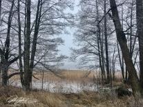 misty-morning-by-thye-sea-12-of-23