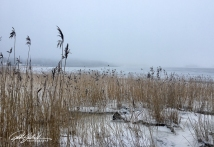 misty-morning-by-thye-sea-21-of-23