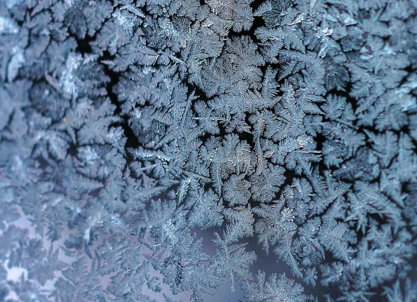 frost-flower