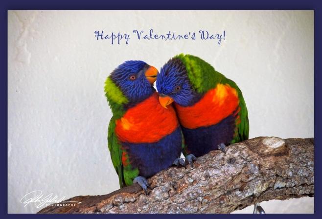 happy valentines day 1.jpg