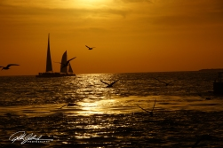 key-west-sunset-61