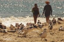 Boynton Beach (2 of 31)