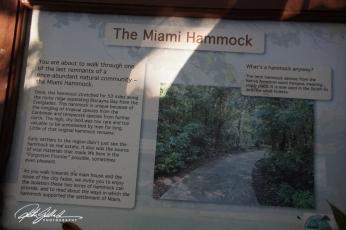 miami-hammock-21