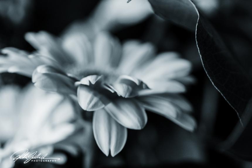 weekend bouquet (4)-2